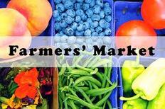 farmers markets stockton on tees